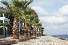 Kinaliada beach, raw Stock Image