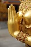 Kinaree dourado da mão Fotos de Stock Royalty Free