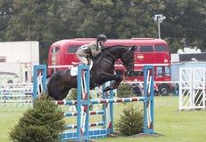 Kincooley курсируя скачущ загородка Стоковая Фотография RF