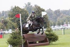 Kincooley Cruising Jumping Fence Royalty Free Stock Photo