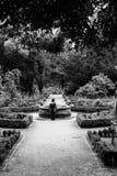 Kind alleen in het park Royalty-vrije Stock Afbeelding