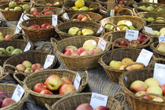 Kind of apples. Some kind of apples in basket at a market Royalty Free Stock Photography