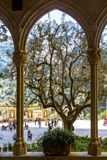 Kind from arch windows of a monastery of Montserrat. View of square, mountains and silhouette of tree through arch of Basilica Santa Maria de Montserrat Abbey Stock Images