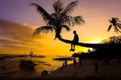 Kind auf Kokosnussbaum - Sonnenuntergangstrand lizenzfreie stockfotos