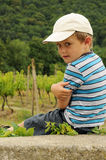 Kind auf Weinberg Stockbild