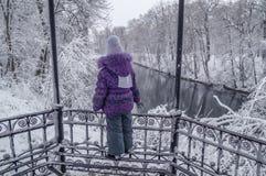 Kind betrachtet den Snowy-Wald lizenzfreie stockfotografie