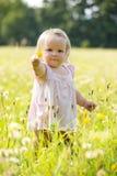 Kind bij paardebloemweide in de zomer Royalty-vrije Stock Afbeelding