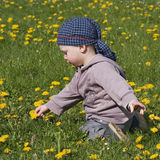Kind in bloemen Stock Foto's