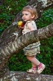 Kind, das Apfel in den Baumasten isst Stockfotografie