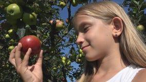 Kind, das Apple, Kind im Obstgarten, Landwirt Girl Studying Fruits im Baum isst stockfotos