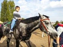 Kind, das auf das Pferd geht Lizenzfreie Stockfotografie
