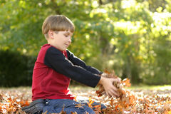 Kind, das in den Blättern spielt Stockfoto