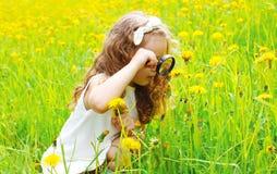 Kind, das durch Lupe auf Löwenzahnblumen schaut Stockbilder