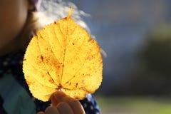 Kind, das ein gelbes Blatt auf seiner Hand hält Lizenzfreie Stockfotos