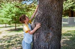 Kind, das einen Baum berührt Lizenzfreie Stockbilder