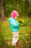 Kind, das in Herbstpark geht Stockfoto