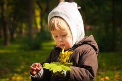Kind, das in Herbstpark geht Stockfotografie