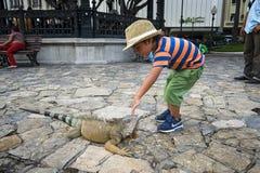 Kind, das mit einem Leguan im Parque BolÃvar in Guayaquil, Ecuador spielt Stockfotos