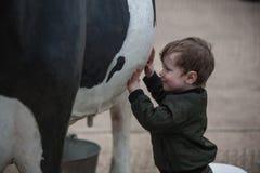 Kind, das mit lebensgroßer Kuh spielt stockbilder