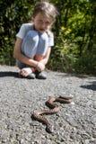 Kind, das nah von der Giftschlange stationiert stockfoto