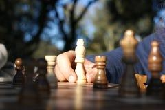 Kind, das Schach spielt Stockfotos
