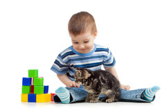 Kind, das Spielzeugblöcke mit Katzehaustier spielt Lizenzfreies Stockfoto