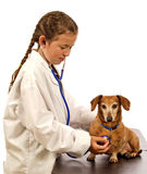 Kind, das tierärztlichen Doktor With Dog spielt stockfoto