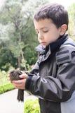 Kind, das Vogel hält lizenzfreies stockbild