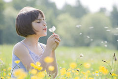 Kind dat dandelion2956 blaast Royalty-vrije Stock Fotografie