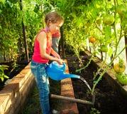 Kind dat de tuin water geeft Stock Foto