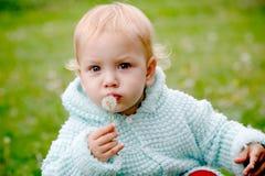 Kind dat in paardebloem gloeit Royalty-vrije Stock Foto