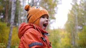 Kind in de herfstpark die en pret hebben die, die in de verse lucht lopen spelen lachen stock videobeelden