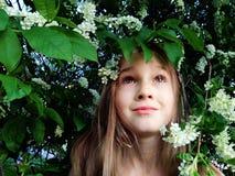 Kind in de takken van een bloeiende kers stock foto