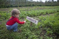 Kind in de tuin. Royalty-vrije Stock Afbeelding