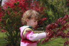 Kind in de tuin Stock Afbeeldingen