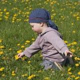 Kind in den Blumen Stockfotos