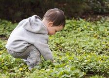 Kind in der Natur Stockbilder