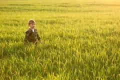 Kind in der Wiese im hohen Gras bei Sonnenuntergang Stockbild