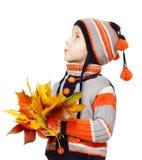 Kind in der woolen Kleidung mit Herbstlaub. Ahornfall über Weiß Lizenzfreie Stockbilder