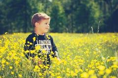 Kind des kleinen Jungen auf einem wunderbaren Gebiet von gelben Blumen Lizenzfreies Stockbild