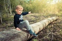 Kind des kleinen Jungen, das auf einem Baum zeigt auf die Sonne von Zukunft sitzt Lizenzfreies Stockbild