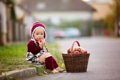 Kind die appelen in een dorp in de herfst eten Weinig spel van de babyjongen stock afbeeldingen