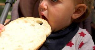 Kind die brood als voorzitter eten stock video