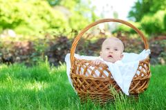 Kind die de wereld onderzoeken: blonde baby met verraste gezichtszitting in een rieten mand op picknick en het waarnemen van de p royalty-vrije stock afbeeldingen