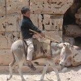Kind die een ezel berijden Stock Afbeelding
