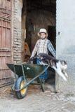 Kind die een kat in de kruiwagen dragen Stock Fotografie