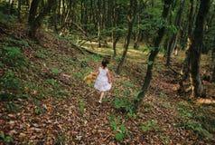 Kind die in het hout lopen Stock Afbeelding
