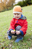 Kind die madeliefjebloemen bekijken Royalty-vrije Stock Foto
