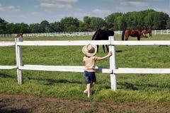 Kind die op de paarden letten royalty-vrije stock afbeelding