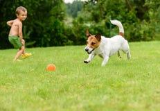 Kind die stuk speelgoed bal werpen aan hond die het vangen Royalty-vrije Stock Afbeeldingen